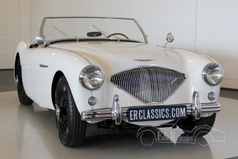 Austin-Healey 100-4 Overdrive 1955  for sale