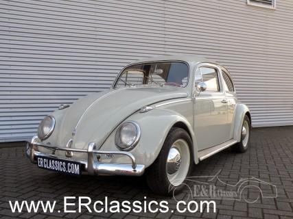 Volkswagen 1960 for sale