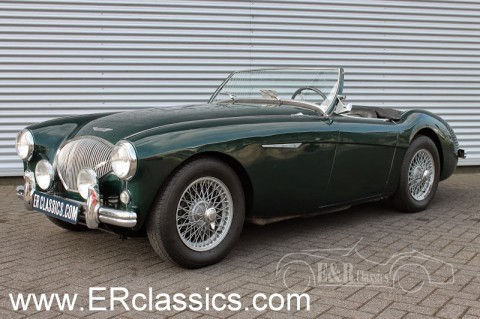 Austin Healey 1956 for sale