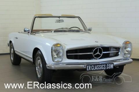Mercedes Benz 230SL Cabriolet 1964 for sale