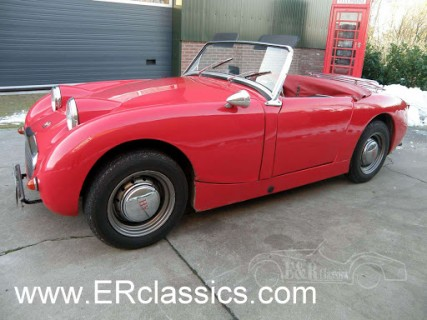 Austin Healey 1959 for sale