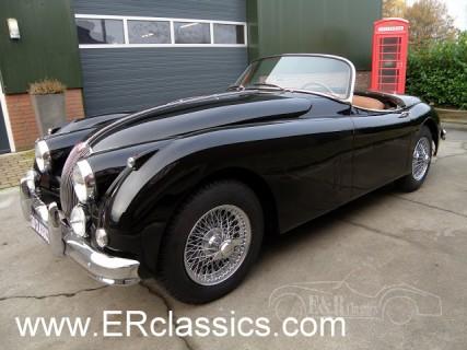 Jaguar 1960 for sale