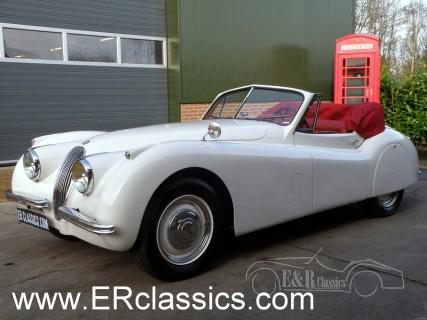 Jaguar 1954 for sale