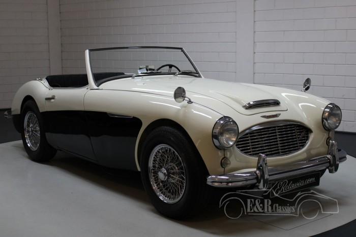 Austin Healey 100-6 1956  for sale