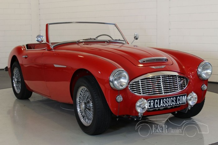 Austin Healey 100-6 1957 for sale