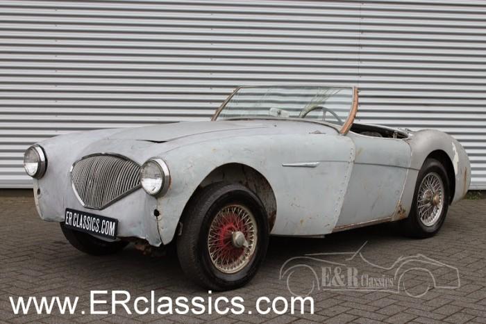 Austin Healey 100-4 1955 na sprzedaż