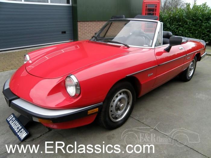 Alfa 1986 na sprzedaż