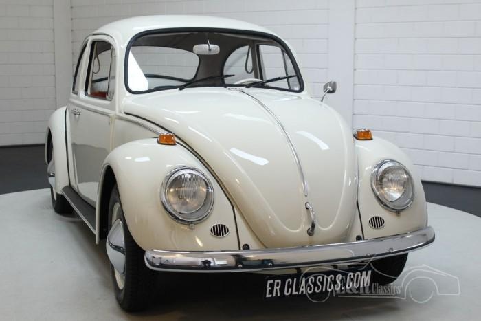 Volkswagen Beetle 1200 1965 for sale