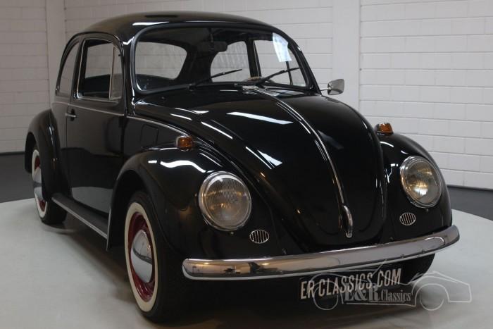 Volkswagen Beetle 1972 for sale