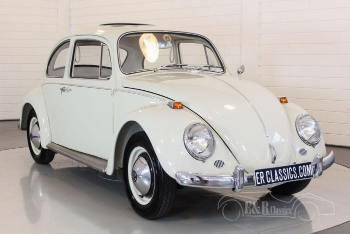 Volkswagen Beetle 1964 for sale