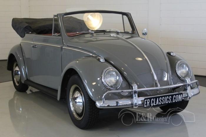 Volkswagen Beetle Cabriolet 1963 for sale