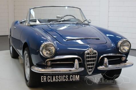Alfa Romeo Giulia 1600 Spider 1963 till salu