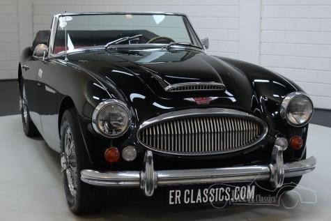 Sprzedaż Austin Healey 3000 MKIII BJ8 1966