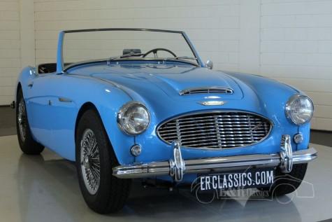 Austin-Healey 3000 MKI 1960  for sale