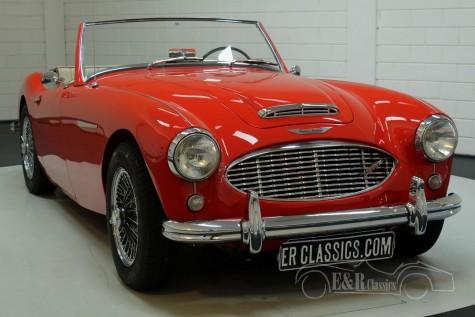 Austin Healey 3000 MK1 1960  for sale