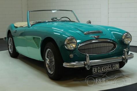 Austin Healey 3000 MK2 1960  for sale