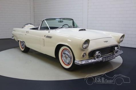 Ford Thunderbird para venda