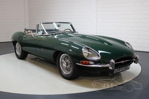 *VIP* Jaguar E-Type 1.5 Cabriolet for sale