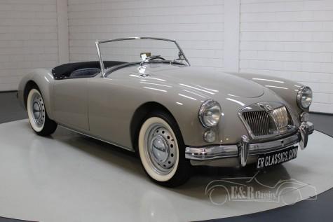 Prodej MG MGA 1622 MKII