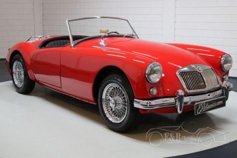 MG MGA 1955 venda