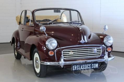Morris Minor Tourer 1000 Cabriolet 1964 for sale