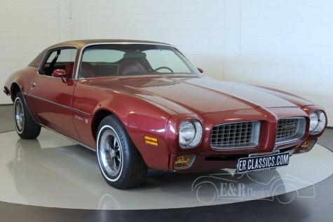 Pontiac Firebird Esprit Coupe V8 1973 for sale