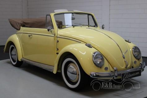 Predám Volkswagen 1200 kabriolet 1963