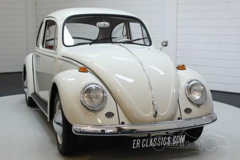 فولكس واجن بيتل 1200 1965 للبيع