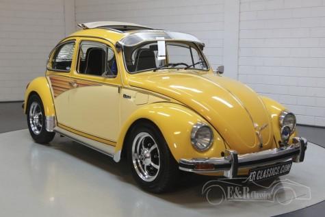 Maggiolino VW in vendita
