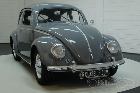 Volkswagen Beetle 1953  for sale
