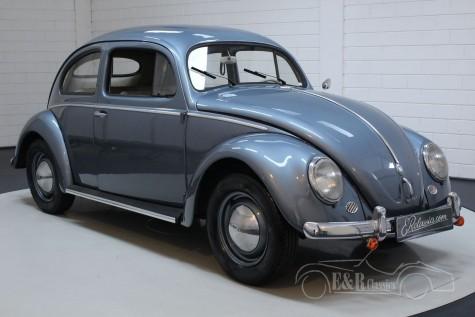 Volkswagen Beetle Oval 1955 en venta