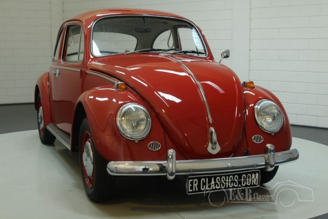 Volkswagen Beetle 1966 for sale