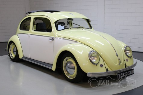 VW Beetle Custom in vendita