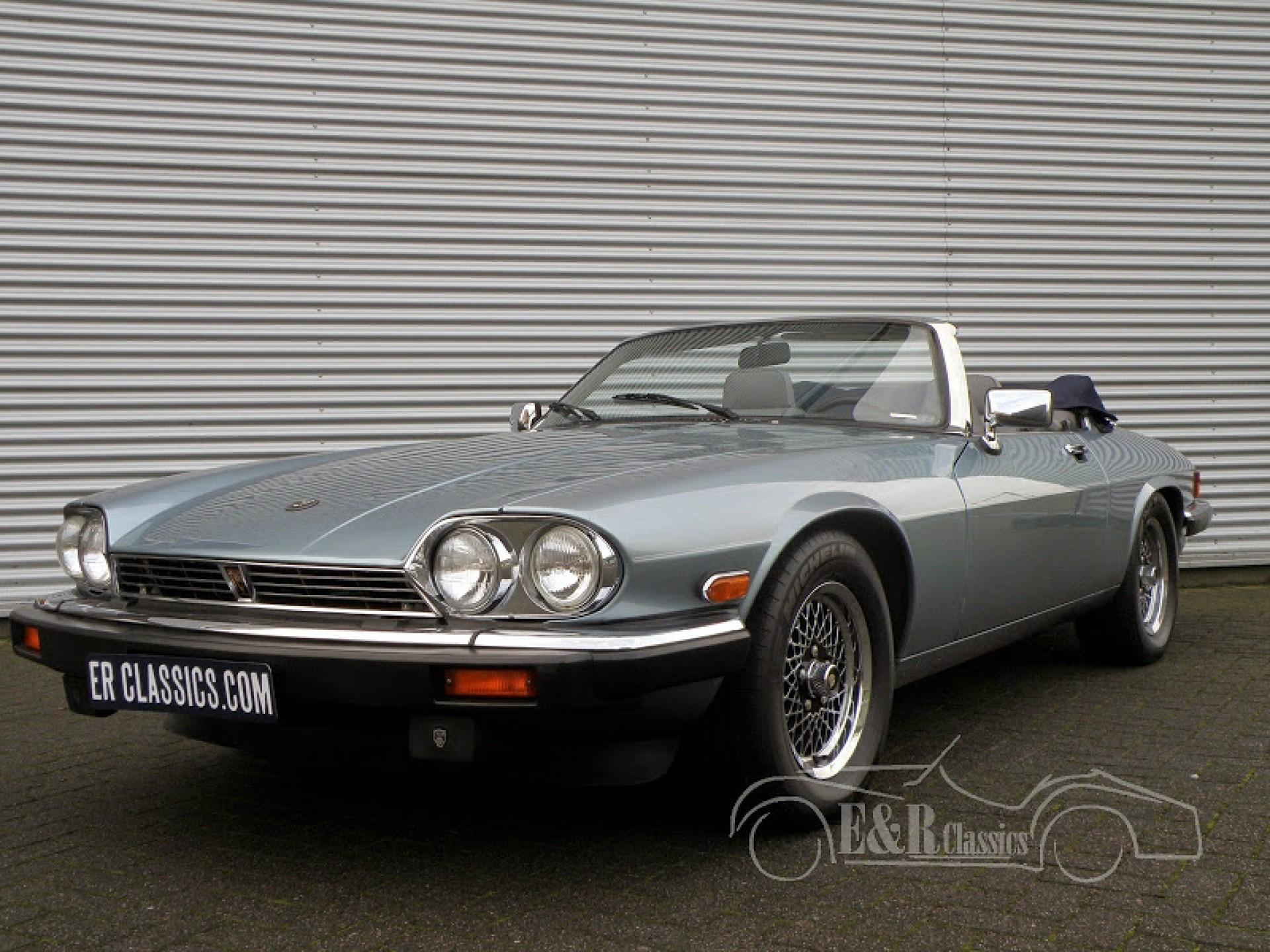 Jaguar Classic Cars